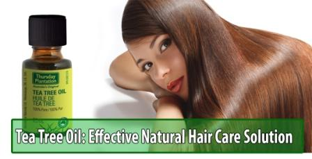 Tea Tree Oil: An Effective Natural Hair Care Solution